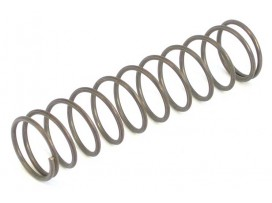Standard Replacement Spring [GFB]